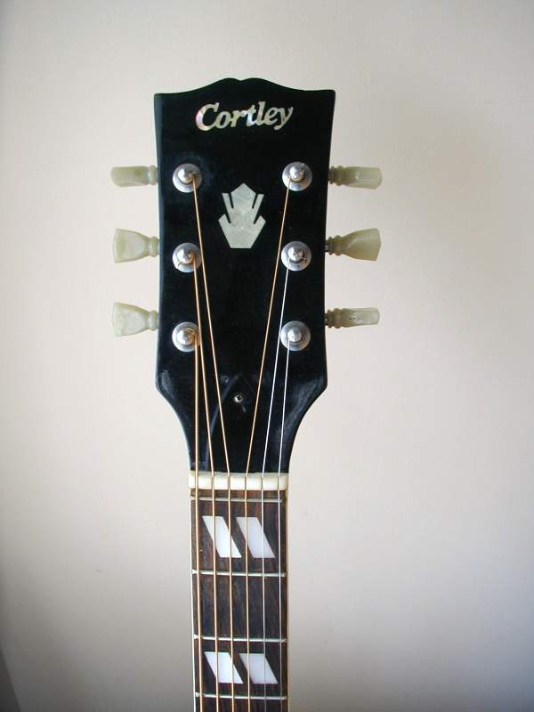 Cortley W 65 Headstock - Gibson Style
